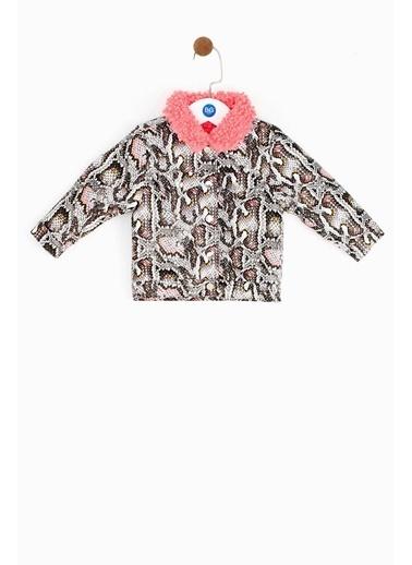 BG Baby Kız Bebek Desenli Ceket Renkli